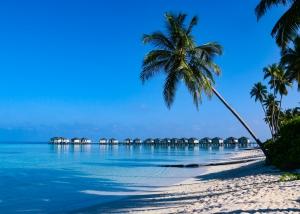 Romantischer Strandurlaub auf den Malediven