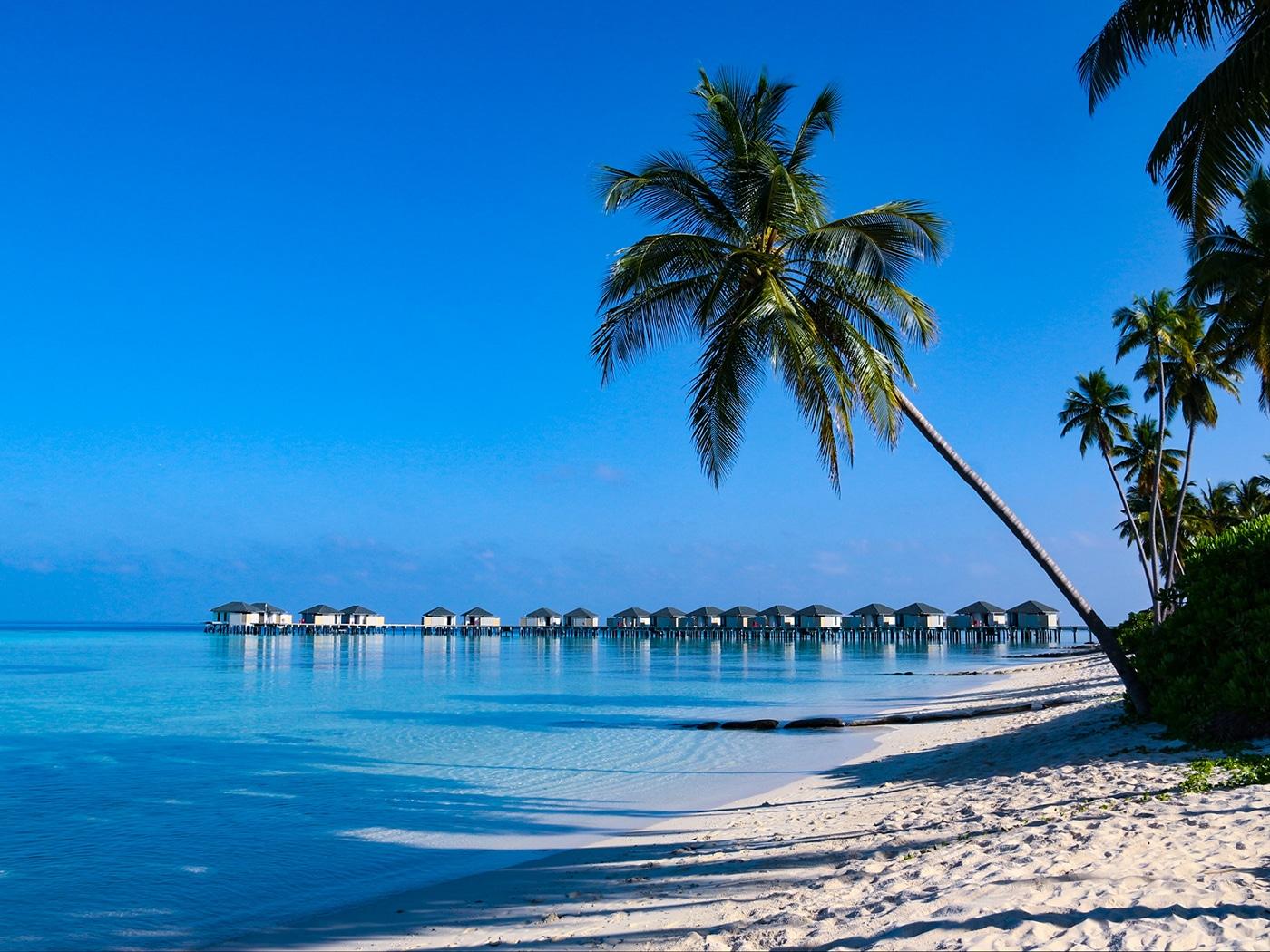 Strand auf Amari Havodda - Traumurlaub Malediven - Urlaubsengel Reisebüro Weinheim