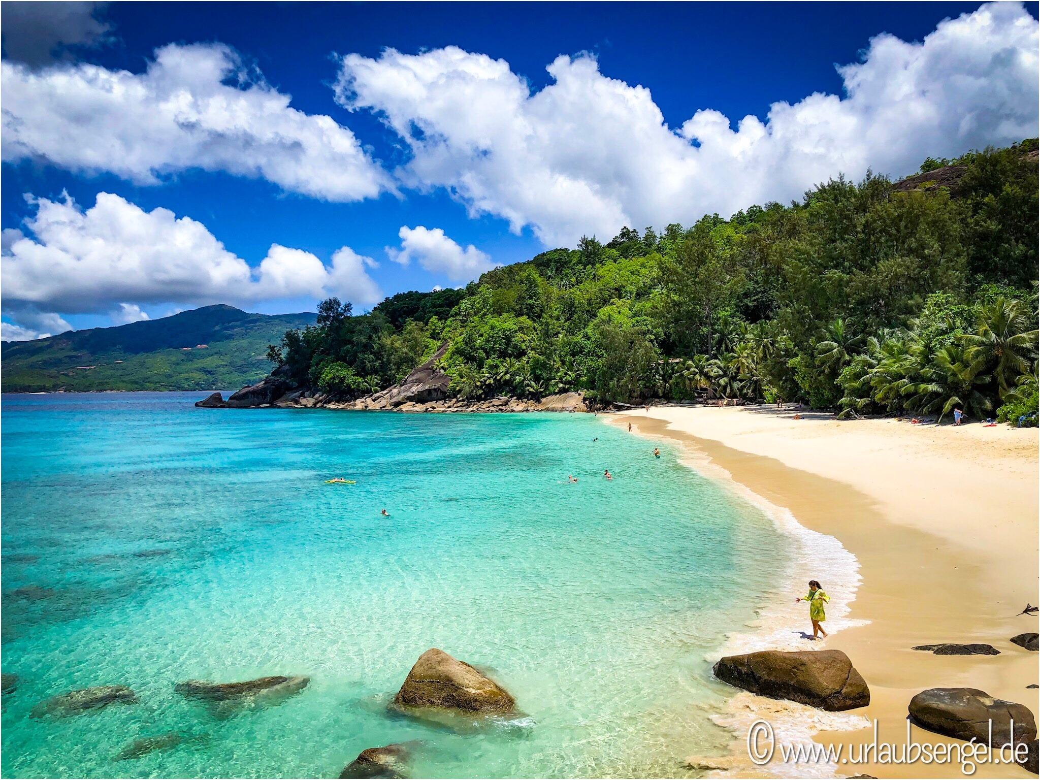 Mahé Seychellen, Traumstrand mit Palmen