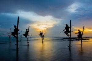 Stelzenfischer in Koggala - Traumreisen Sri Lanka