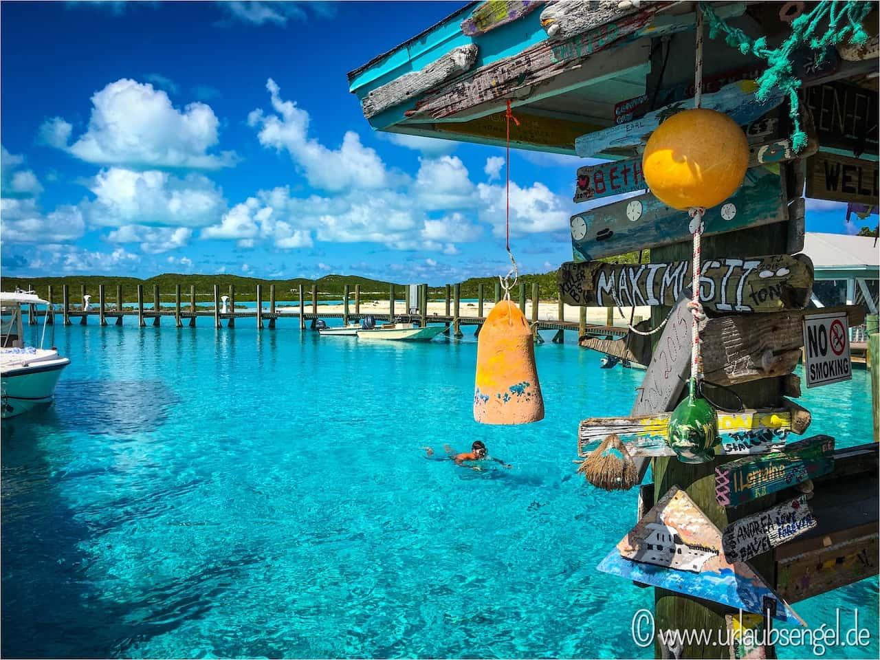 Haie streicheln auf Compass Cay