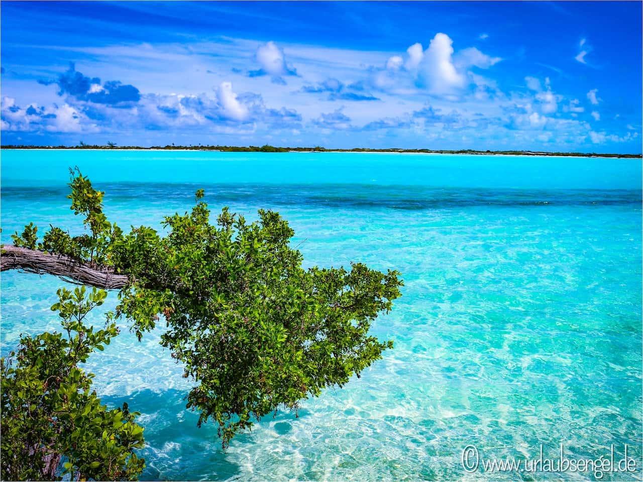 Exuma, Bahamas. Glasklares Meer