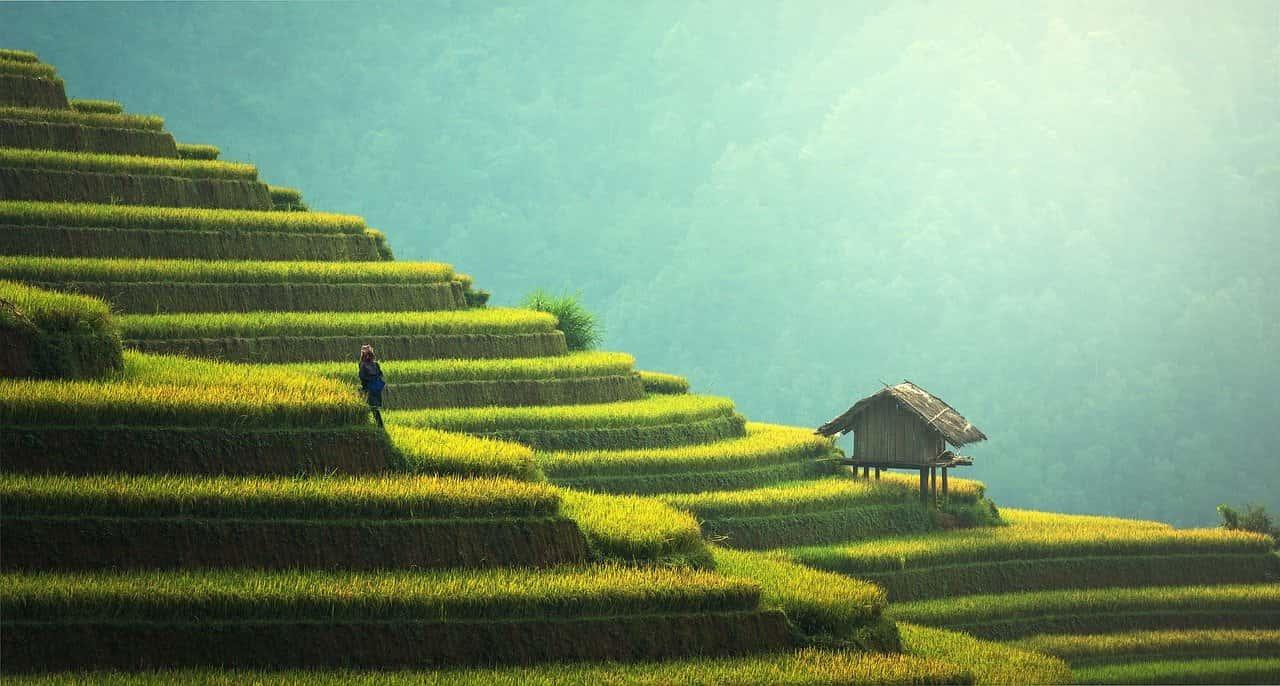 Reisterrassen | Nachhaltiges Reisen und sanfter Tourismus