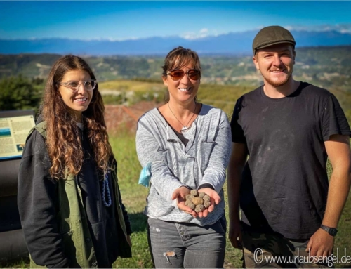 Trüffel und Barolo im Piemont